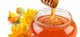 رابر ، قطب تولید عسل در کویر